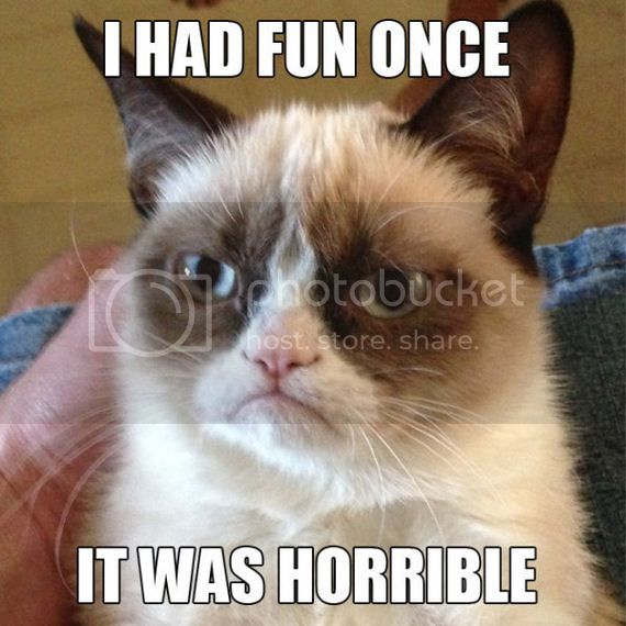 Grumpy cat says just get over it if you don t like me  I think I m cute 